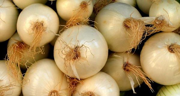 Fête de l'oignon à Charmentray le samedi 2 octobre